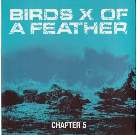 Birds Of A X Feather - Chapter 5