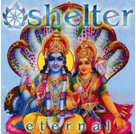 Shelter - Eternal LP