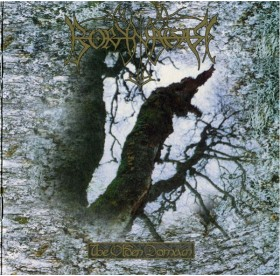 Borknagar - The Olden Demain LP