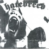 Hatebreed - Under The Knife BW 7""